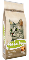 Micho Adult Cat